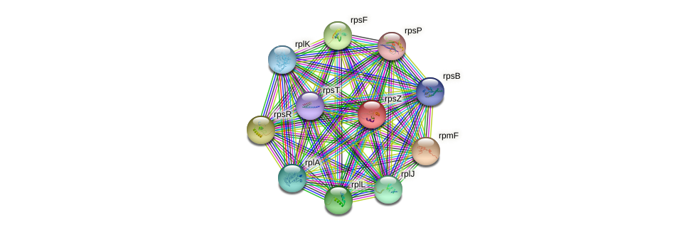 rpsN protein (Deinococcus geothermalis) - STRING interaction network