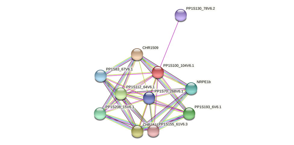 PP1S100_104V6.1 protein (Physcomitrella patens) - STRING interaction network