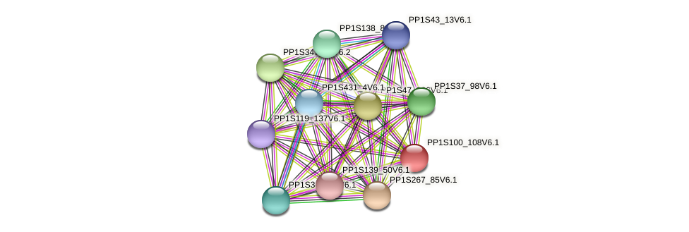 PP1S100_108V6.1 protein (Physcomitrella patens) - STRING interaction network