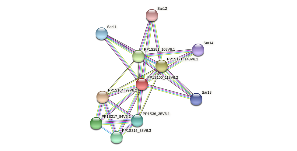 PP1S100_118V6.2 protein (Physcomitrella patens) - STRING interaction network