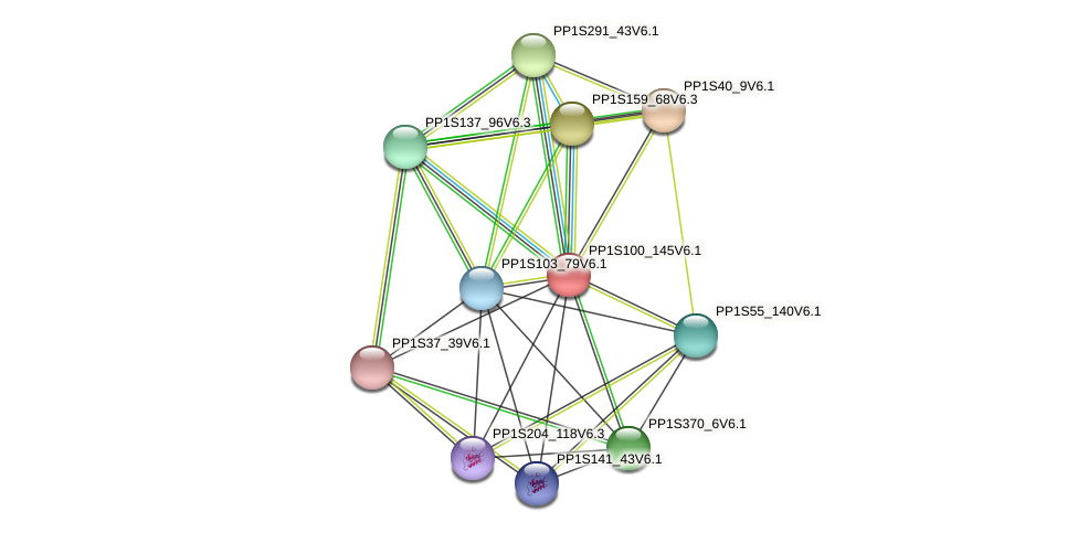 PP1S100_145V6.1 protein (Physcomitrella patens) - STRING interaction network