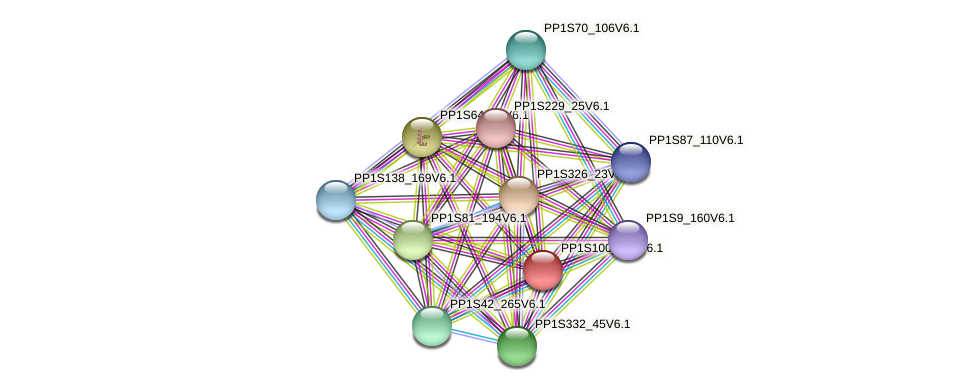 PP1S100_243V6.1 protein (Physcomitrella patens) - STRING interaction network
