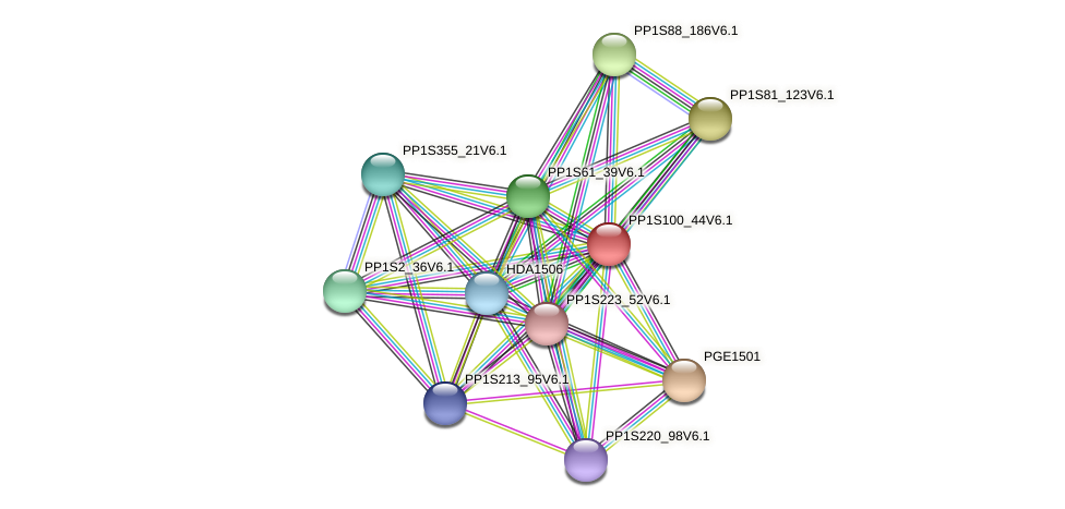 PP1S100_44V6.1 protein (Physcomitrella patens) - STRING interaction network