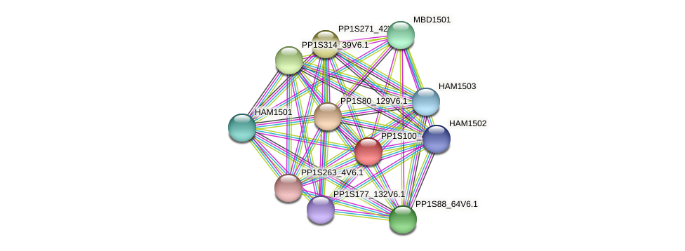 PP1S100_48V6.1 protein (Physcomitrella patens) - STRING interaction network