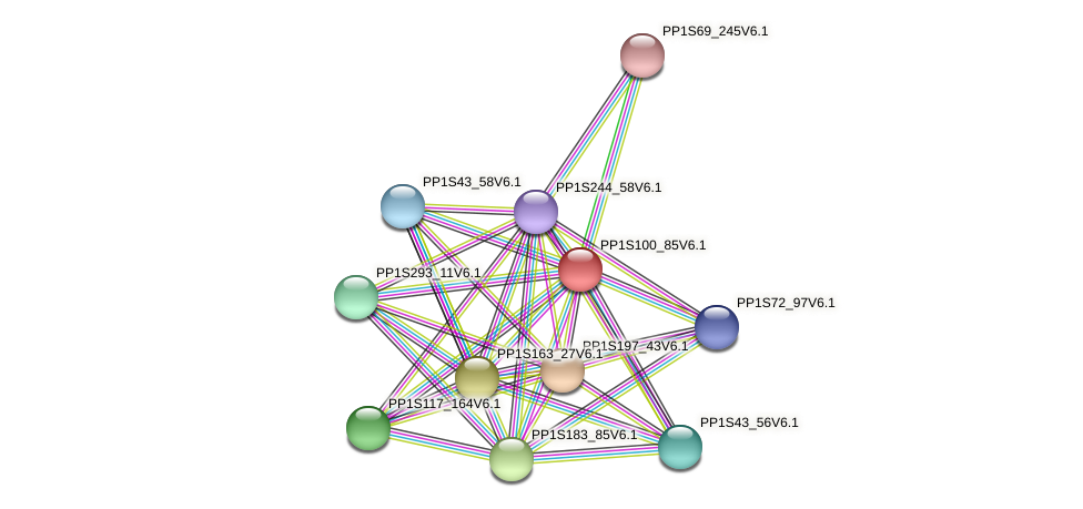 PP1S100_85V6.1 protein (Physcomitrella patens) - STRING interaction network
