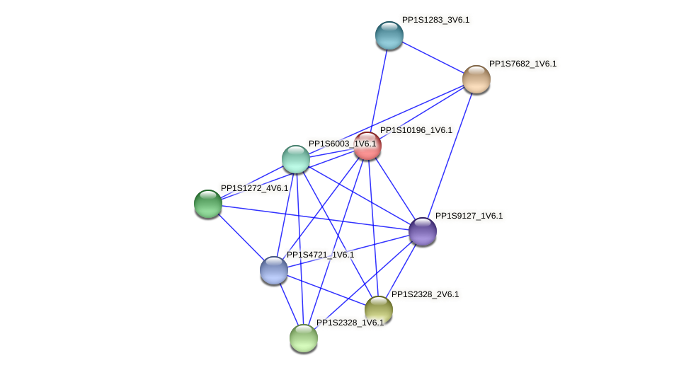 PP1S10196_1V6.1 protein (Physcomitrella patens) - STRING interaction network