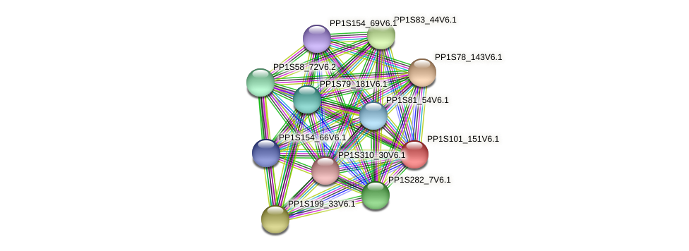 PP1S101_151V6.1 protein (Physcomitrella patens) - STRING interaction network