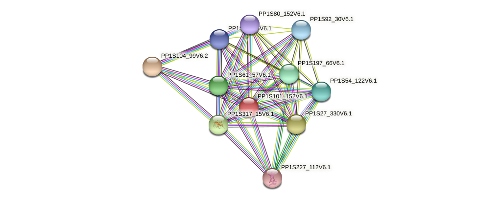 PP1S101_152V6.1 protein (Physcomitrella patens) - STRING interaction network