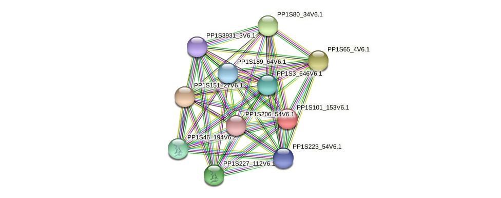 PP1S101_153V6.1 protein (Physcomitrella patens) - STRING interaction network