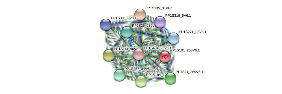 PP1S101_208V6.1 protein (Physcomitrella patens) - STRING interaction network