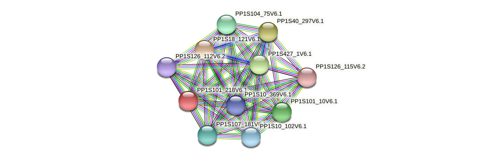 PP1S101_218V6.1 protein (Physcomitrella patens) - STRING interaction network