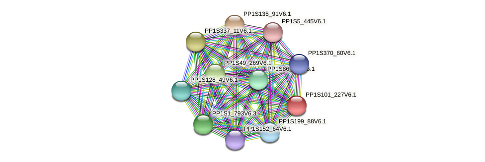 PP1S101_227V6.1 protein (Physcomitrella patens) - STRING interaction network