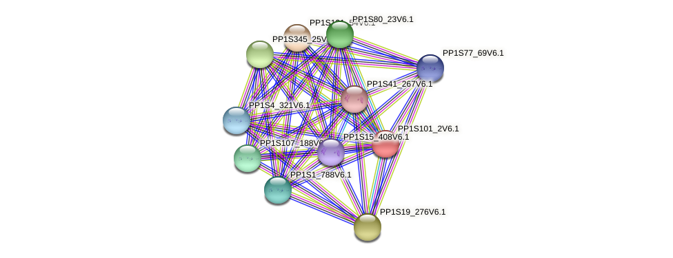 PP1S101_2V6.1 protein (Physcomitrella patens) - STRING interaction network