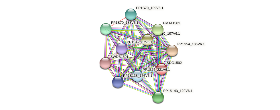 SDG1502 protein (Physcomitrella patens) - STRING interaction network