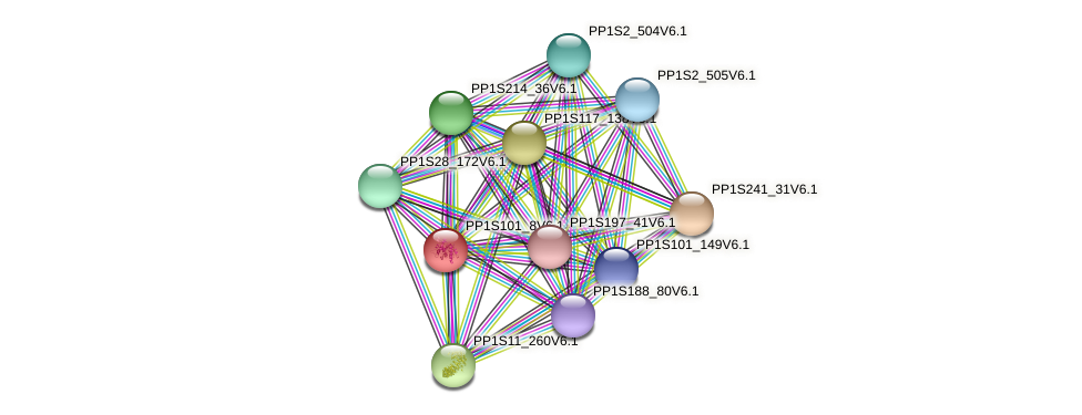 PP1S101_8V6.1 protein (Physcomitrella patens) - STRING interaction network