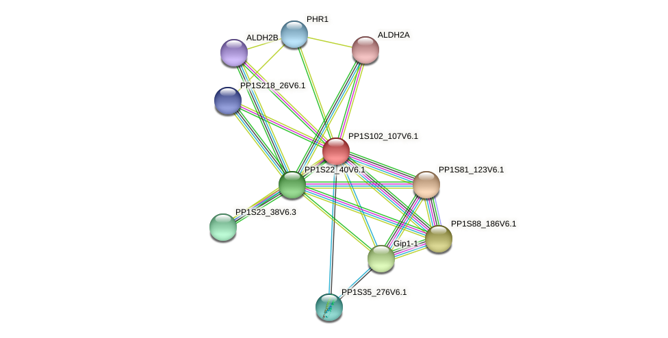 PP1S102_107V6.1 protein (Physcomitrella patens) - STRING interaction network