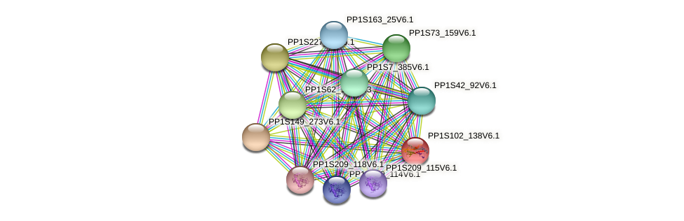 PP1S102_138V6.1 protein (Physcomitrella patens) - STRING interaction network
