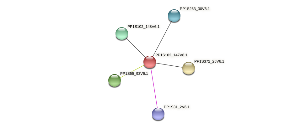 PP1S102_147V6.1 protein (Physcomitrella patens) - STRING interaction network
