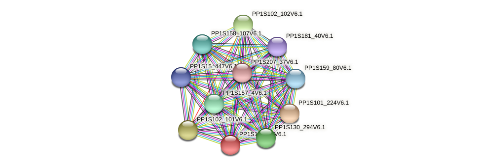 PP1S102_17V6.1 protein (Physcomitrella patens) - STRING interaction network