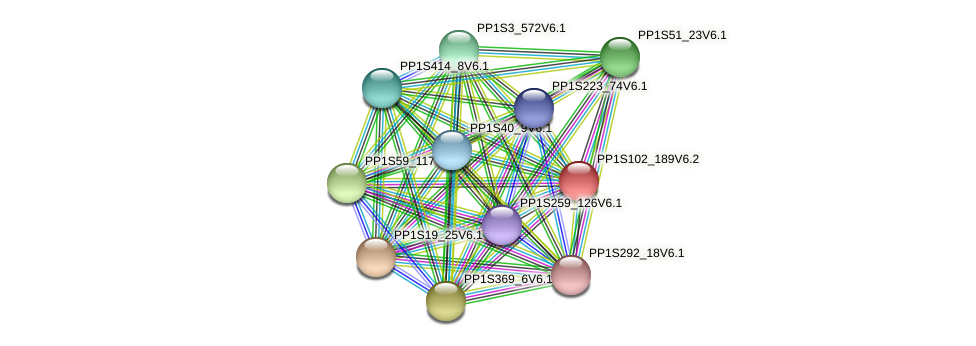 PP1S102_189V6.1 protein (Physcomitrella patens) - STRING interaction network