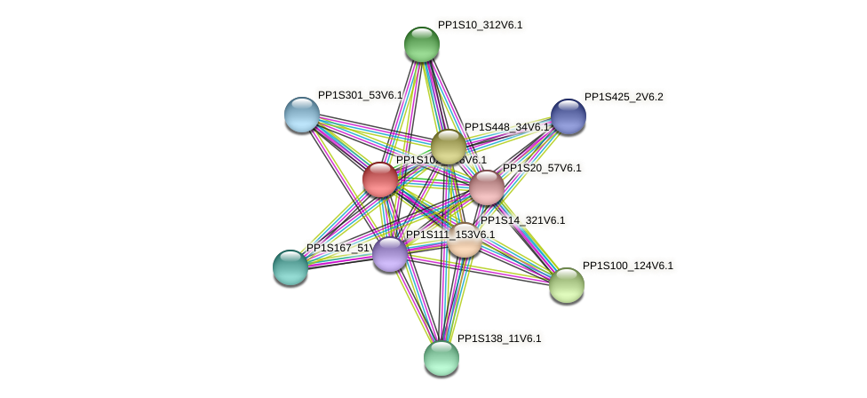 PP1S102_196V6.1 protein (Physcomitrella patens) - STRING interaction network