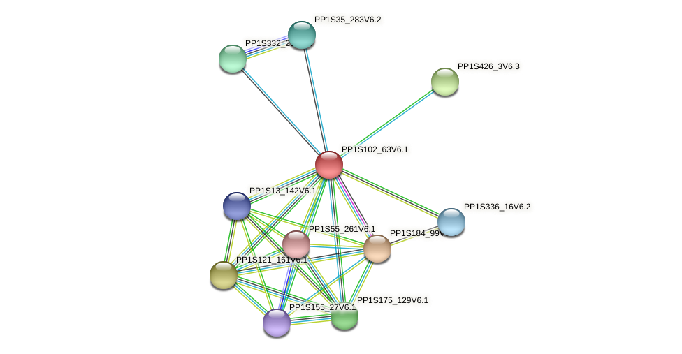 PP1S102_63V6.1 protein (Physcomitrella patens) - STRING interaction network