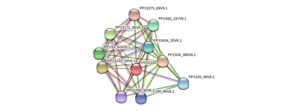 PP1S102_71V6.1 protein (Physcomitrella patens) - STRING interaction network