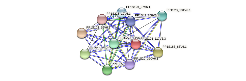 PP1S103_117V6.3 protein (Physcomitrella patens) - STRING interaction network
