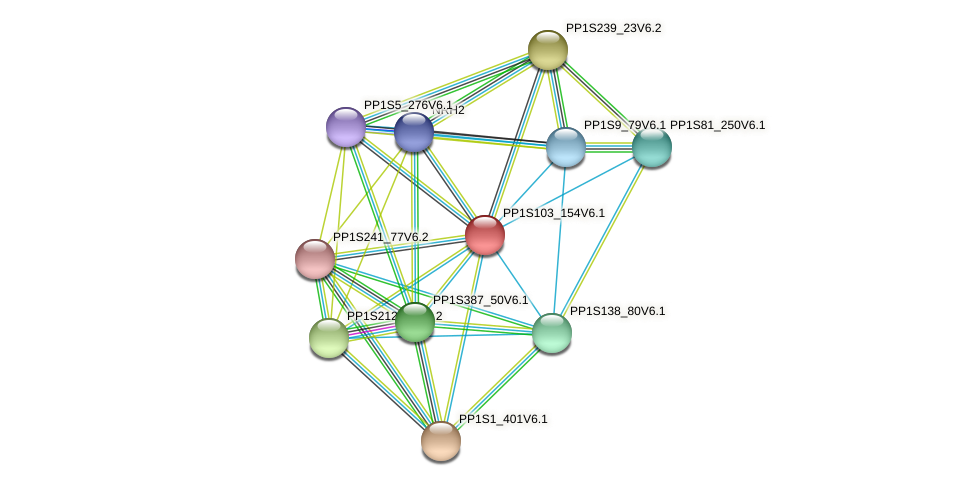 PP1S103_154V6.1 protein (Physcomitrella patens) - STRING interaction network