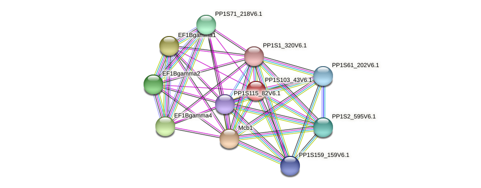PP1S103_43V6.1 protein (Physcomitrella patens) - STRING interaction network