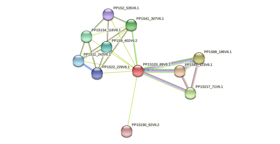 PP1S103_89V6.1 protein (Physcomitrella patens) - STRING interaction network