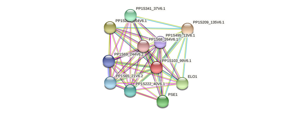 PP1S103_99V6.1 protein (Physcomitrella patens) - STRING interaction network