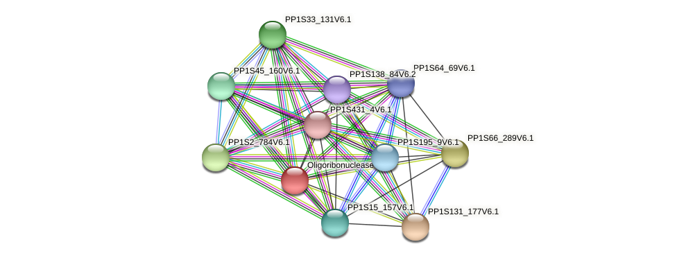 PP1S104_119V6.1 protein (Physcomitrella patens) - STRING interaction network