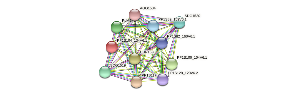 PP1S104_134V6.1 protein (Physcomitrella patens) - STRING interaction network