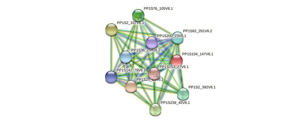 PP1S104_147V6.1 protein (Physcomitrella patens) - STRING interaction network