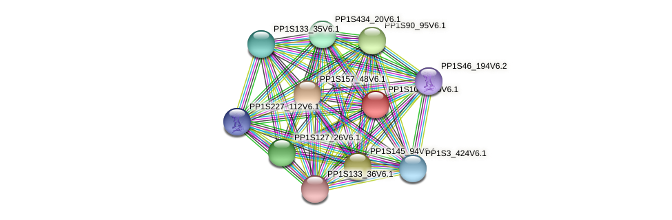 PP1S104_185V6.1 protein (Physcomitrella patens) - STRING interaction network