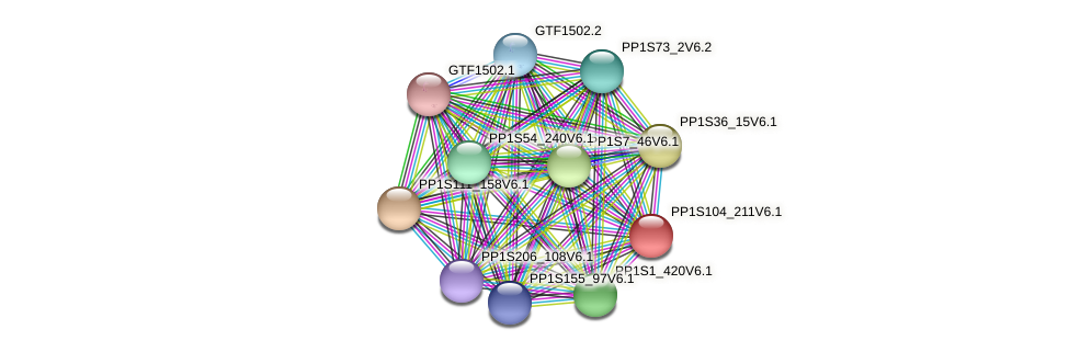 PP1S104_211V6.1 protein (Physcomitrella patens) - STRING interaction network