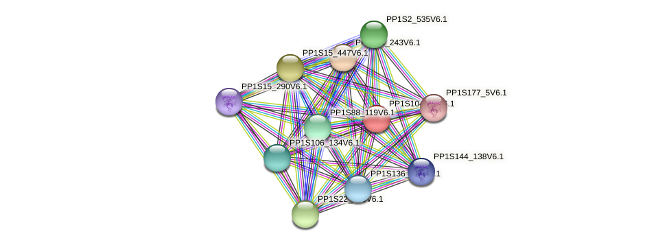 PP1S104_30V6.1 protein (Physcomitrella patens) - STRING interaction network