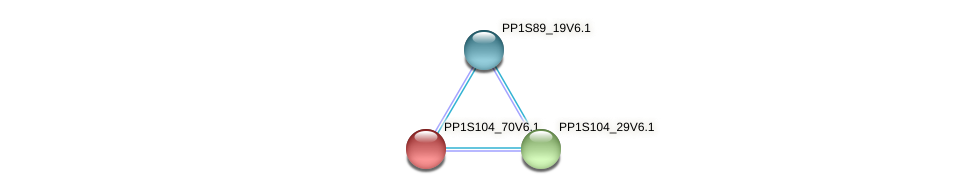 PP1S104_70V6.1 protein (Physcomitrella patens) - STRING interaction network