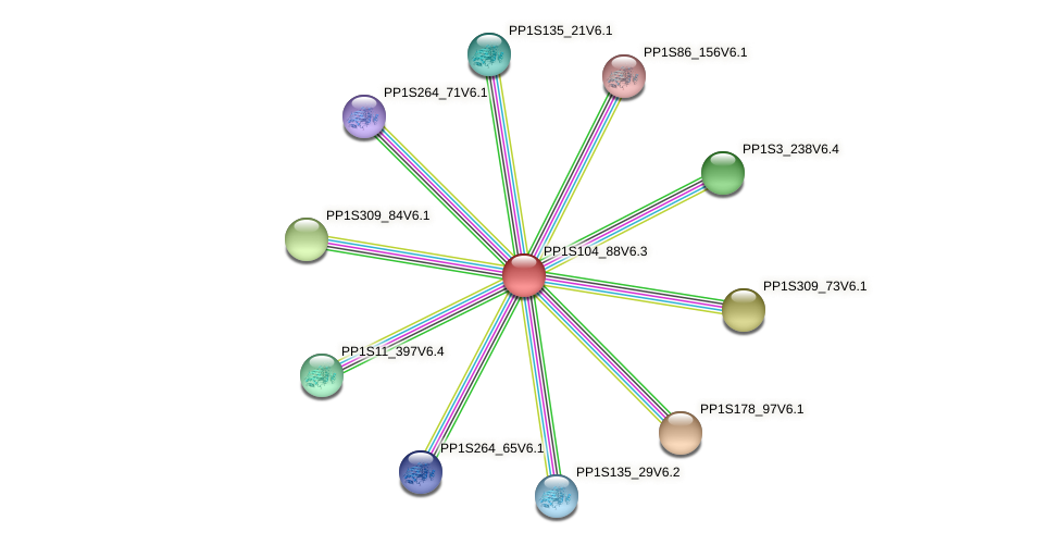 PP1S104_88V6.1 protein (Physcomitrella patens) - STRING interaction network