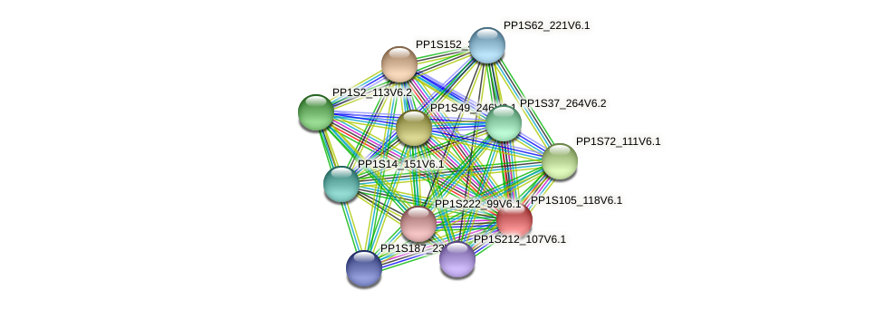 PP1S105_118V6.1 protein (Physcomitrella patens) - STRING interaction network