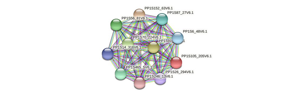 PP1S105_205V6.1 protein (Physcomitrella patens) - STRING interaction network