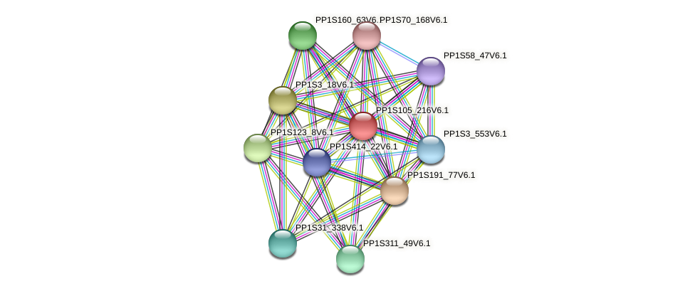 PP1S105_216V6.1 protein (Physcomitrella patens) - STRING interaction network