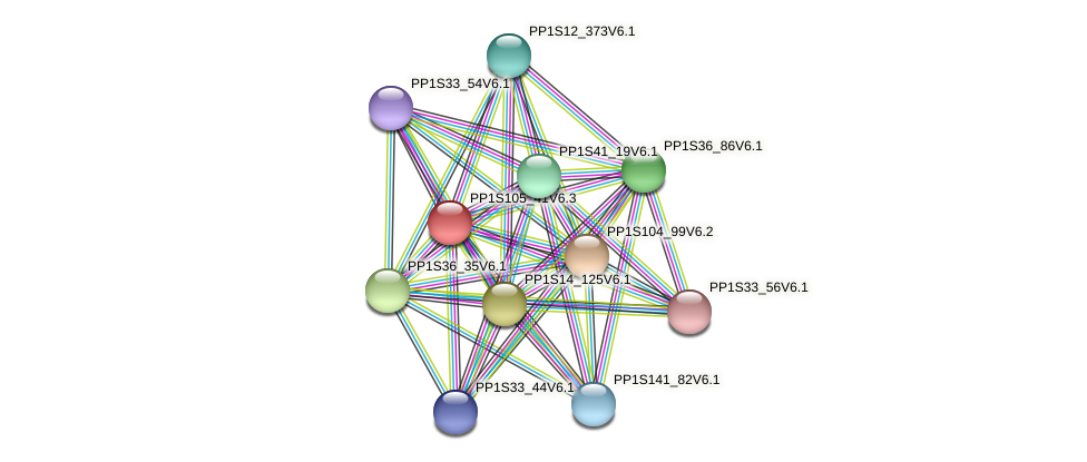 PP1S105_41V6.3 protein (Physcomitrella patens) - STRING interaction network