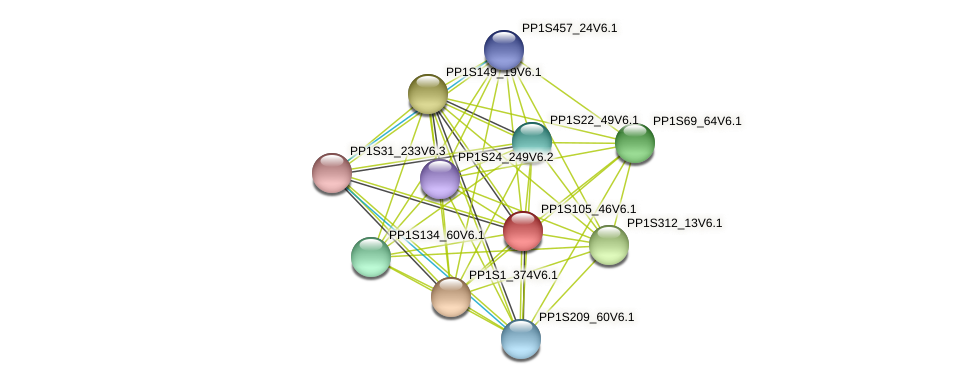 PP1S105_46V6.1 protein (Physcomitrella patens) - STRING interaction network