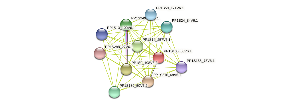 PP1S105_58V6.1 protein (Physcomitrella patens) - STRING interaction network