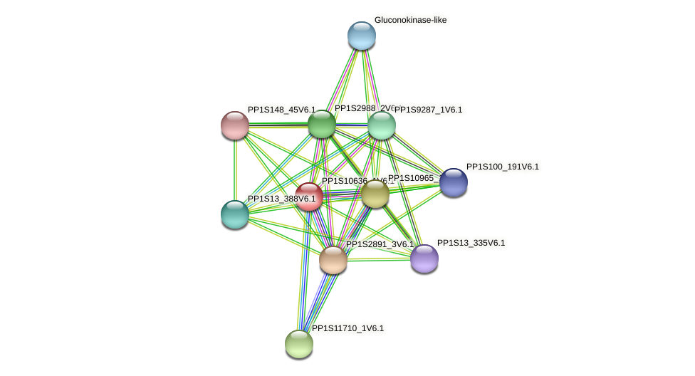 PP1S10636_1V6.1 protein (Physcomitrella patens) - STRING interaction network