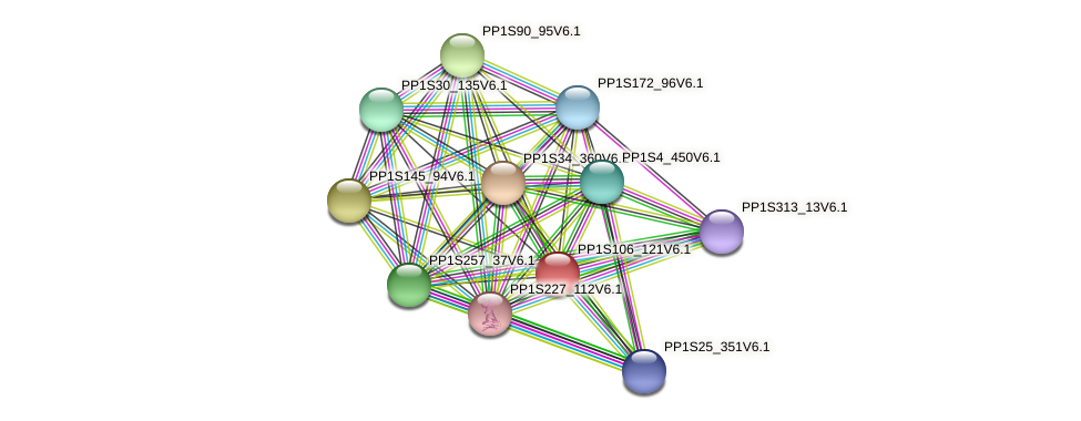PP1S106_121V6.1 protein (Physcomitrella patens) - STRING interaction network