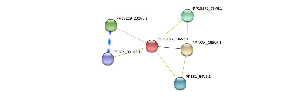 PP1S106_186V6.1 protein (Physcomitrella patens) - STRING interaction network