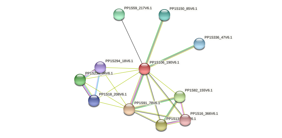PP1S106_190V6.1 protein (Physcomitrella patens) - STRING interaction network